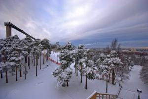 Активный отдых зимой в Таллине