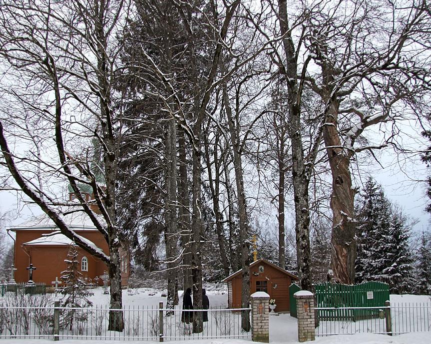 Справа - Святой дуб, слева - Никольский храм