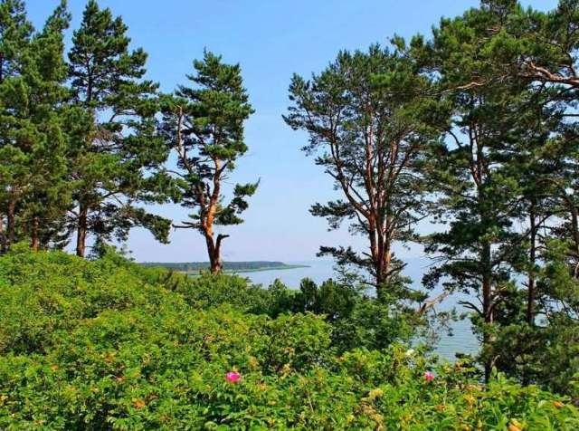 Природный заповедник в Друскининкае