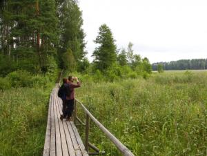 Туристические тропы Вярски